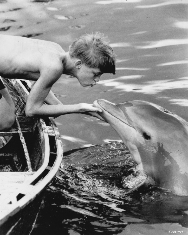 You're my best friend, Flipper