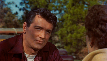 Rock Hudson All that Heaven Allows